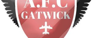 AFC Gatwick 1sts