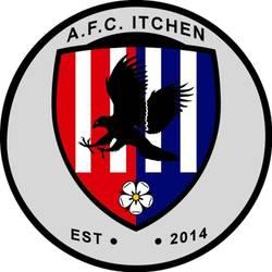 AFC Netley First team badge