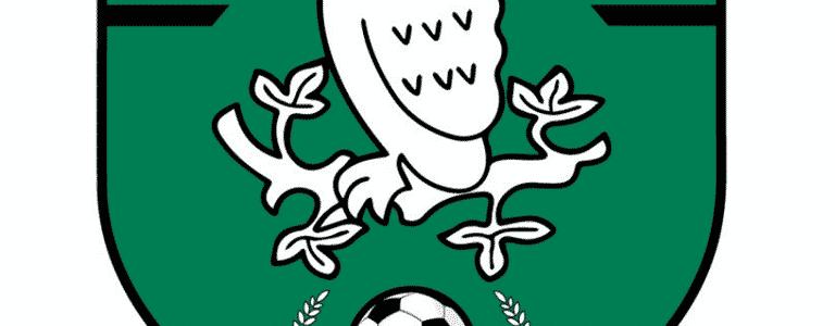 AFC Shirley team photo