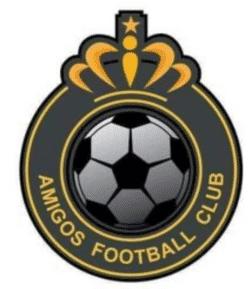 AMIGOS VFC team badge