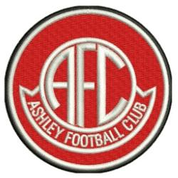 Ashley - Division 2 team badge