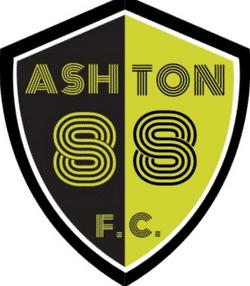 Ashton 88 Wasps U9 - Under 9 West team badge