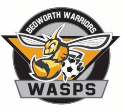 Bedworth Warriors U9 Wasps team badge