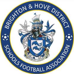BHDSFA U14 team badge