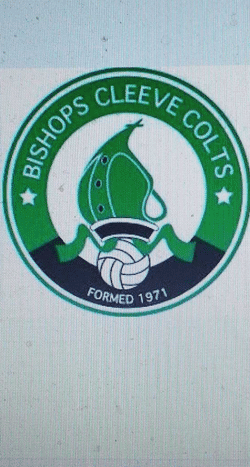 Bishops Cleeve Colts U9's team badge