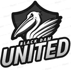 Black Dam United - Division 4 team badge