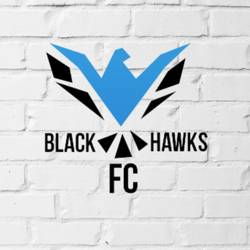 Black Hawks FC team badge