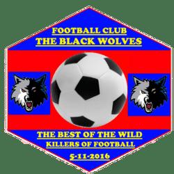 Black Wolves FC team badge