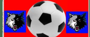 Black Wolves FC