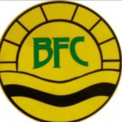 Blisworth Youth U12s team badge