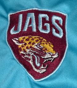 Bristol Jaguars - Senior Division team badge