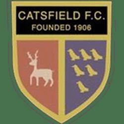 Catsfield FC team badge