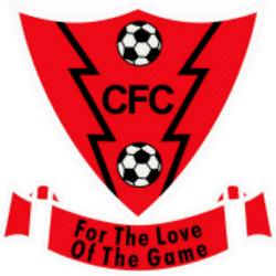 Catshill Girls U13 team badge