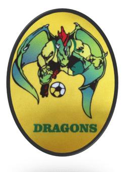 Chadderton Park Dragons U12 team badge