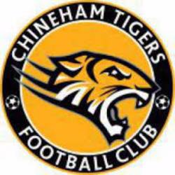 Chineham Tigers Black U12 team badge
