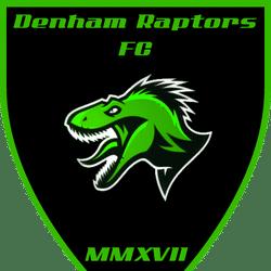 Denham Raptors FC - Tavistock Sound & Vision Third Division team badge