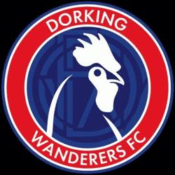 Dorking Wanderers F C team badge