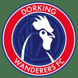 Dorking Wanderers FC team badge