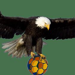 Eagle FC team badge
