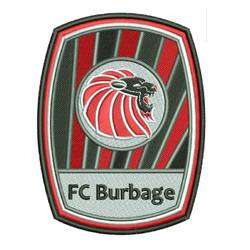 FC Burbage Thundercats team badge