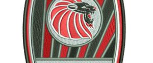 FC Burbage Thundercats