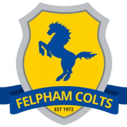 Felpham Colts U10 Yellow - Football team badge