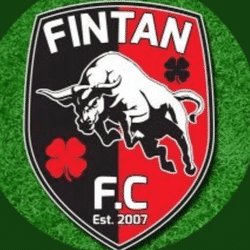 Fintan FC team badge