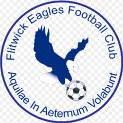 Flitwick Eagles U13 Girls - U13 Division 3 team badge
