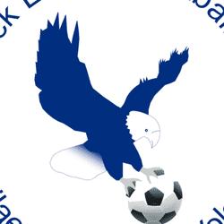 Flitwick Eagles U14s Saturday team badge