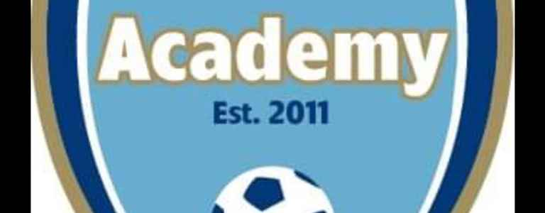 Football & Fitness Academy U8 Wolves team photo