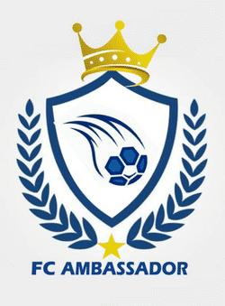 Football Club Ambassador Queens team badge