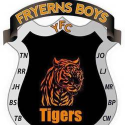 Fryerns Boys Y U14 Tigers team badge