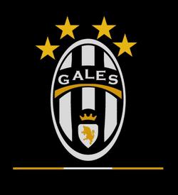 GALES SPORTING CLUB team badge