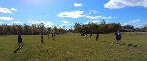Gander Collegiate Boys Soccer