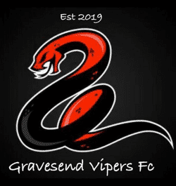 Gravesend Vipers team badge