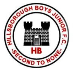 Hillsborough Boys Tigers team badge