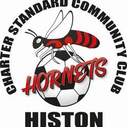 Histon Hornets Football Club team badge