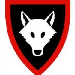 Holmbury & Westcott Wolves U15 team badge