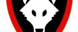 Holmbury & Westcott Wolves U15