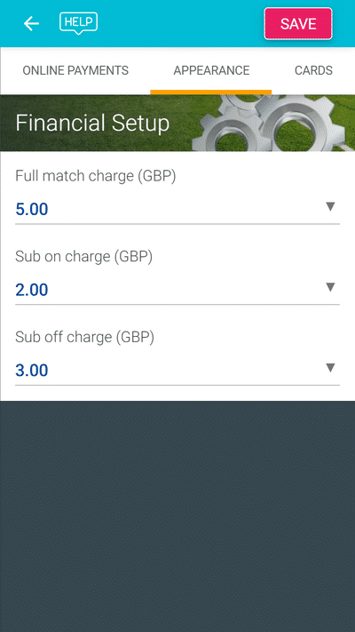 Screenshot of TeamStats : Financial Setup Match Charges