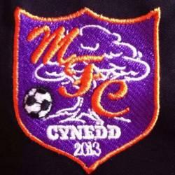 Maesyrhandir Football Club team badge