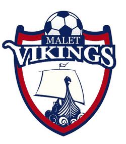 Malet Vikings U13 team badge