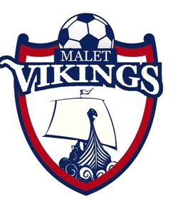 Malet Vikings U14 team badge