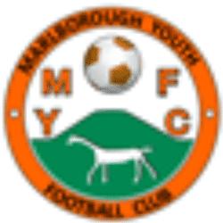 Marlborough Youth Mavericks U12 team badge