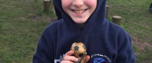 Merley Cobham Sports Youth U11 Spitfire