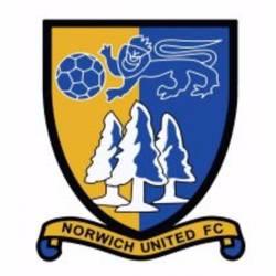Norwich United - Premier Division team badge