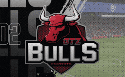 Nplay GTZ BULLS team badge