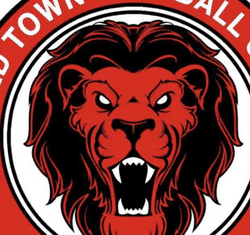 Old Town Boys Firsts team badge