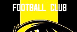 Olton Ravens FC
