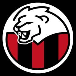 Orion - 1 Division team badge